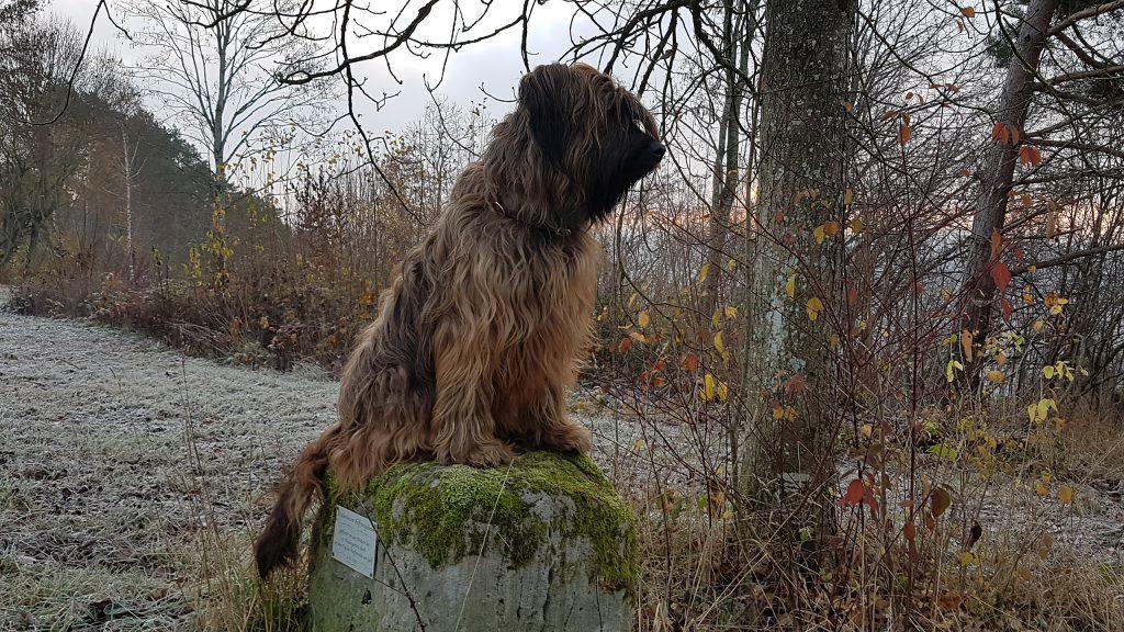 Lia sitzt auf dem Stein